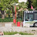 beach, tree, bus stop, bus, Strandweg